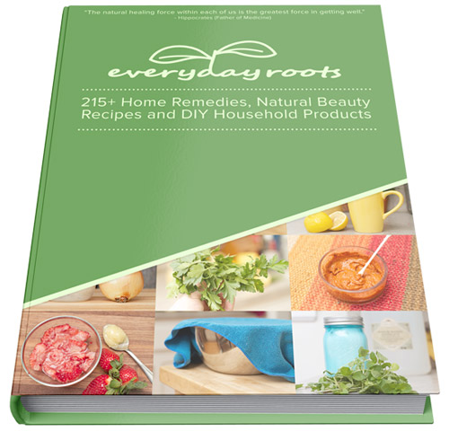 Everyday Roots Book Cover